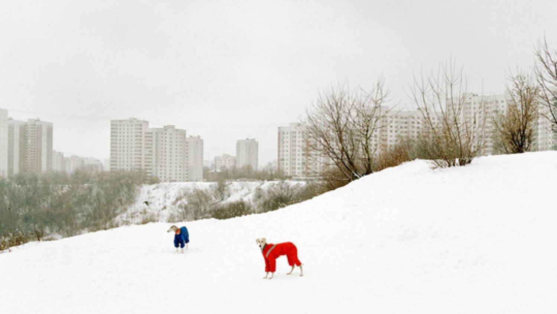 Aleksandrs Gronskis, no sērijas The Edge, 2009