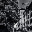 E.Veidenbauma-Dzirnavu iela, 1950.gadu otrā puse