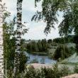 Bērzi pie Sauleskalna, 1950.gadu otrā puse