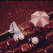 Deivids Falkoners (Falconer, David), Lai taupītu elektrību, visas Portlendas vidusskolas savas futbola spēles pārcēla uz dienas gaišajām stundām, jo parasti tās notika naktīs. Daži fani sēž zem lietus nojumes un skatās spēli (10/1973)