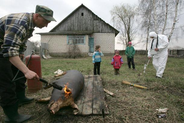 Viktors Dračevs. Radiācijas pārbaude Gubareviči ciematā Gomeļas apgabalā
