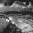 Uģis Niedre. Pienvedējs Piebalgā. 1978. g.