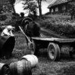 Uģis Niedre. Jāņu darbi. Vecpiebalga, Vēveri. 1979. gads