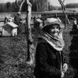 Uģis Niedre. Dravā vai Portrets dārzā. 1970./1980. gadi