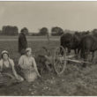 Rembates pagasts. Kartupeļu novākšana ar zirgu velkamo mašīnu, [193-?] (Oriģināla glabātājs- Aira Vilka)