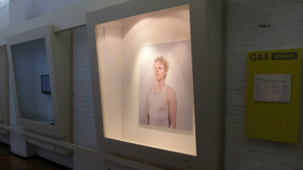 Gallery 44 vitrīnas. Foto - Arnis Balčus