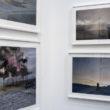 Sāras Annes Džonsones darbi Paris Photo