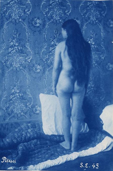Šarls Albērs Arno jeb Bertāls. Bez nosaukuma (turku sieviete, 18 gadu veca, dzimusi Pitešči, Rumānijā). 1881. Cianotips no stikla plates negatīva. Inv. nr. 2009.34. Reprodukcija: Metropolitēna mākslas muzejs
