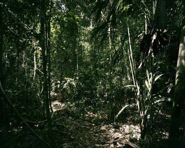 Tomass Štruts. Paradīze 27, Peru. 2005