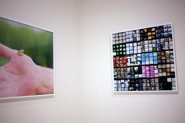Rinko Kavauči darbi Tokijas Metropolitēna fotogrāfijas muzejā