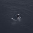 """Kristofers Aksens. Pazeme, kvēlojošs mākonis no sērijas """"Pelēkā istaba"""", 2011"""