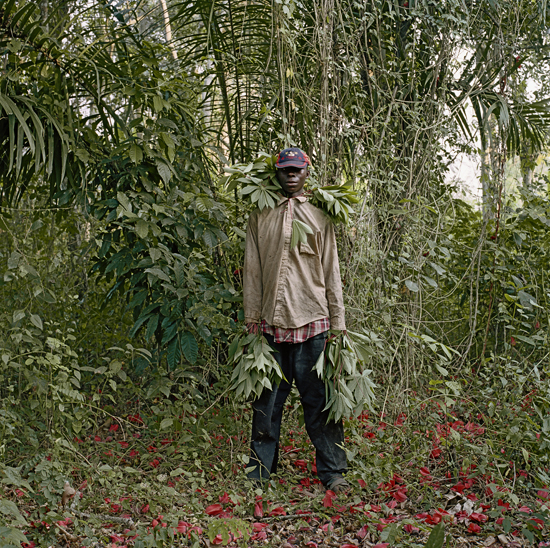 Pīters Hugo. Džons Kvesi, savvaļas bišu medus vācējs, Tečimenas rajons, Gana, 2005