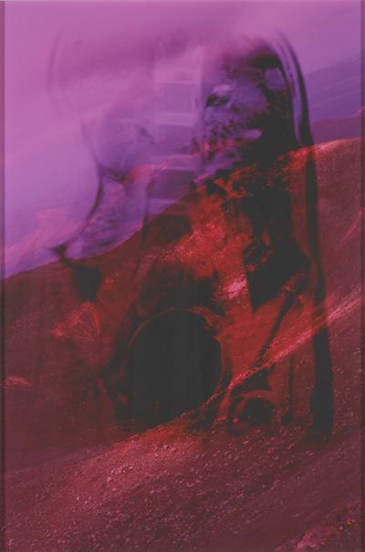 Džozefīne Praida. Tas nav mans kermenis VI. 2011. Pigmenta tintes printera izdruka, 80x49,5 cm. Modernās mākslas muzejs, Ņujorka