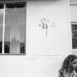 Linda Dorigo. Irāka, Kurdistāna, Karia Rounta, Oktobris 2012. Autonomais Kurdistānas reģions ir mājvieta simtiem tūkstošu kristiešu, kuri bēg no vajāšanas un vardarbības Irākā. Daudzas ģimenes atgriežas savos dzimtajos cimatos, kurus pameta kara laikā. Attēlā redzamajā rituālā jaunā pāra mājai ar jēra asinīm tiek dota svētība.