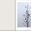 """Anaīsa Lopeza. No projekta """"Sākumā neviens putns nedziedāja"""""""