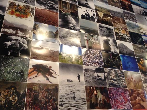 """Skats no Trevora Peglena izstādes """"Pēdējie attēli"""""""