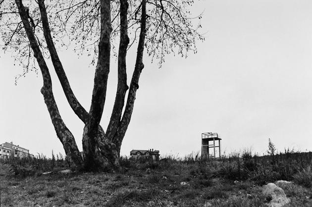 Mārtiņš Lablaiks. Viegli depresīva ainava ar platānu priekšplānā, skatu torni un dažām ēkām. Portugāle, 2012