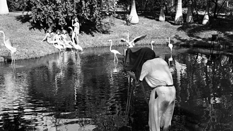 Foto - Laieonels Mērfijs, 1949. Floridas štata arhīvs