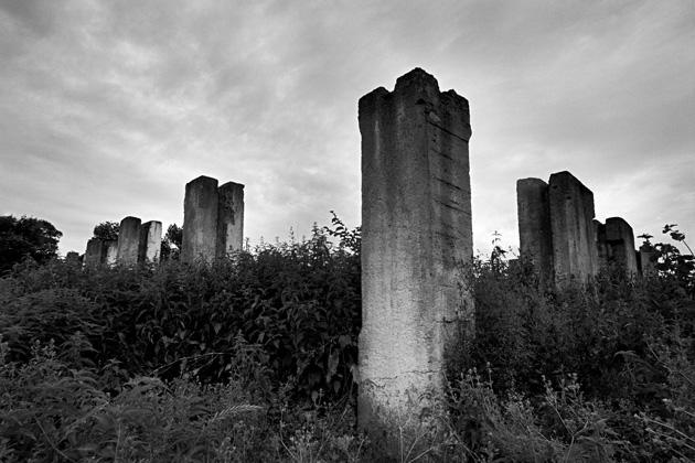 Vītauts Pletkus. Kolonnas Musņinku ciemā, 2009