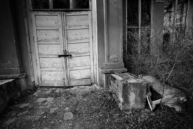 Vītauts Pletkus. Šateķu muižas lauva, 2010